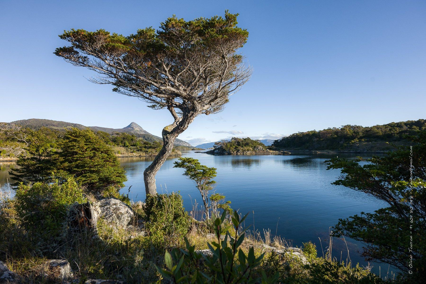 30 mars 2017. Chili.  Baie de Wulaia, haut lieu de vie des indiens Yamana décrit par Darwin et dessinée par le capitaine Fitzroy lors de leur voyage sur le HMS Beagle.    Printemps 2017, du 23 mars au 1er avril. Croisière en Patagonie sur les traces de Magellan dans les fjords qui dessinnent le tracé de la Terre de Feu, entre Chili et Argentine, entre Punta Arenas et Ushuia, en passant par le Cap Horn, à la rencontre de ceux qui vivent de cet extreme monde, aux confins des mers. // © Olivier Touron / Divergence